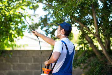 outdoor exterminator pest control